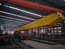 Crane for China local customer