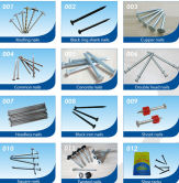 Supply different types of iron nails (common nail , roofing nail, concrete nail ..)