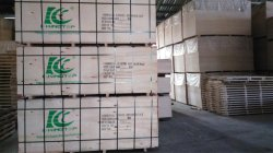 5.5mm Bintangor face Plywood standard Export packment
