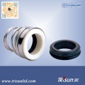 Trisun 155 Mechanical Seal for Aesseal T04