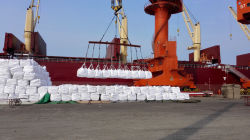 loading on port for bulk shipment