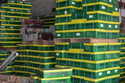 products warehouse