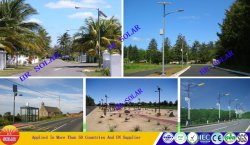 Solar Street Lights Installation Picture for Reference
