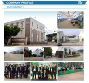 Professional Sales Team for office space planning solution