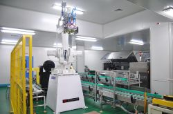 Packaging line robot
