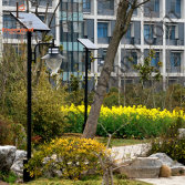 solar garden light project in pudong area, Shanghai City
