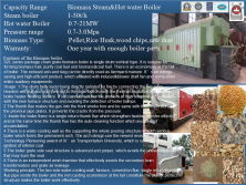 Biomass Steam Hot Water Boiler