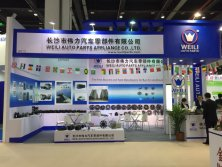2016 Shanghai exhibition CIAAR