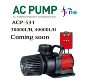 40000L/H water pump is coming