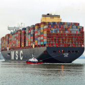 Sea Freight Forwarder in China all of Ports to West Africa