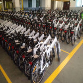 20inch Folding E Bikes For 20′ Container