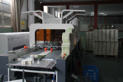 Automatic Inspection Machine