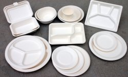 bio-degradable sugar cane baggase pulp tableware plate with Bio-degradable plates