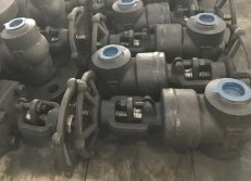 Forged Gate Valve BW ends