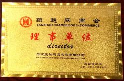 director Yanzhao Chamber of E-commerce
