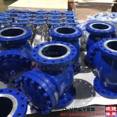 check valve,ball valves Inquiry from Malaysia