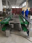 Conveyor of packaging machine is under production