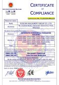 CE Certifcation for Horizontal Pckaging Machine