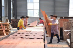 plywood produce process