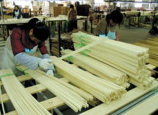 15 Years experience in bamboo