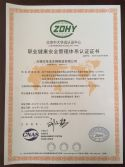 OCCUPATIONAL HEALTH CERTIFICATE 2