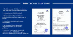 WHY CHOOSE DIAN FONG