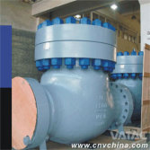 Cast & Forged Check Valve