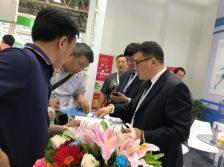 The 28th China Glass Exhibition