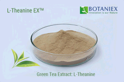 a Breakthrough Patent of Invention for Manufacturing Natural L-Theanine is Officially Approved