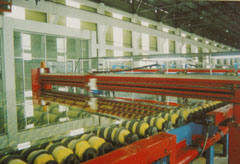 Line for float glass