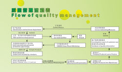 Flow Of Quality Management