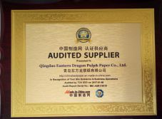 TUV Certificate for 10years Paper Factory