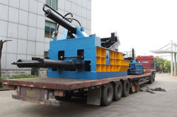 Goods package and delivery to Shanghai Pudong Port
