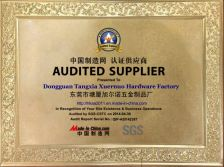 SGS certified report audited supplier