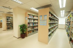 Project for the butterfly village library