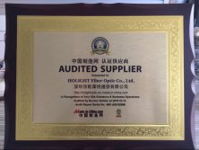 Audited Supplier by Made-in-China