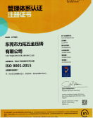 ISO 9001 2015 CHINESE