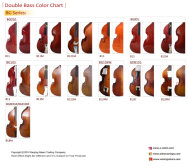 Student D.bass color chart