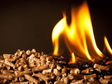 How To Start Biomass Wood Pellet Business