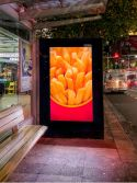 75inch Outdoor Sunlight Readable Touch LCD Advertising Display