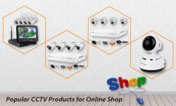 What are the Most Popular CCTV Products for Online Shop ?