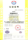 BS OHSAS18001:2007 Certification