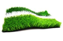 Bi- Color Football Turf