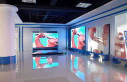 LED Display Exhibition Hall
