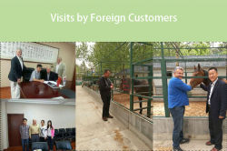 Visits by Foreign Customers