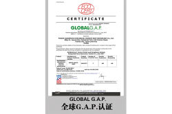 Global GAP Cert