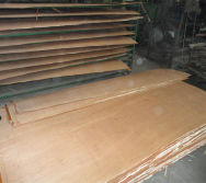 Plywood Hot press