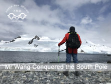 Reached South Pole