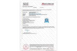 SGS System authentication