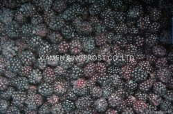 new crop IQF cultivated blackberries